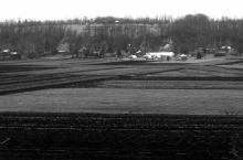 This photo shows the Black Dirt farms of Pine Island.