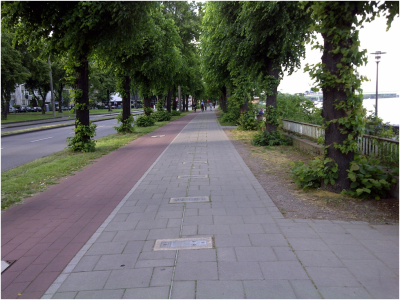 Separate Bicycle Lanes in Parks