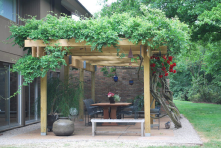 Create a nice area with a pergola and vines.