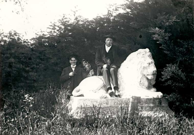 """Wellesley Crescent Park aka """"The Lion Park""""! Love to sit among the redwoods looking up at these gentle giants."""