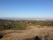 A view of Redwood City from high up within Edgewood Park. Its hard to beat a hike in Edgewood for restoring your soul.